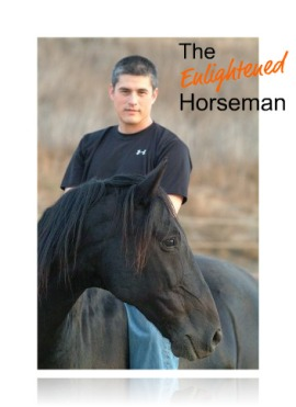 The Enlightened Horseman