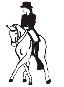 horse dressage female