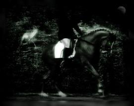 headless horseman - bruq