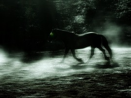 headless horseman - mist and horse